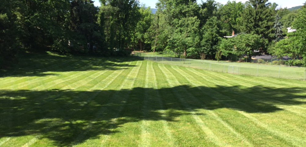 Lawn Care - Lawn Care Paradise Landscaping: Roanoke, Buchanan, VA: Landscape
