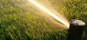 lawn-sprinkler1